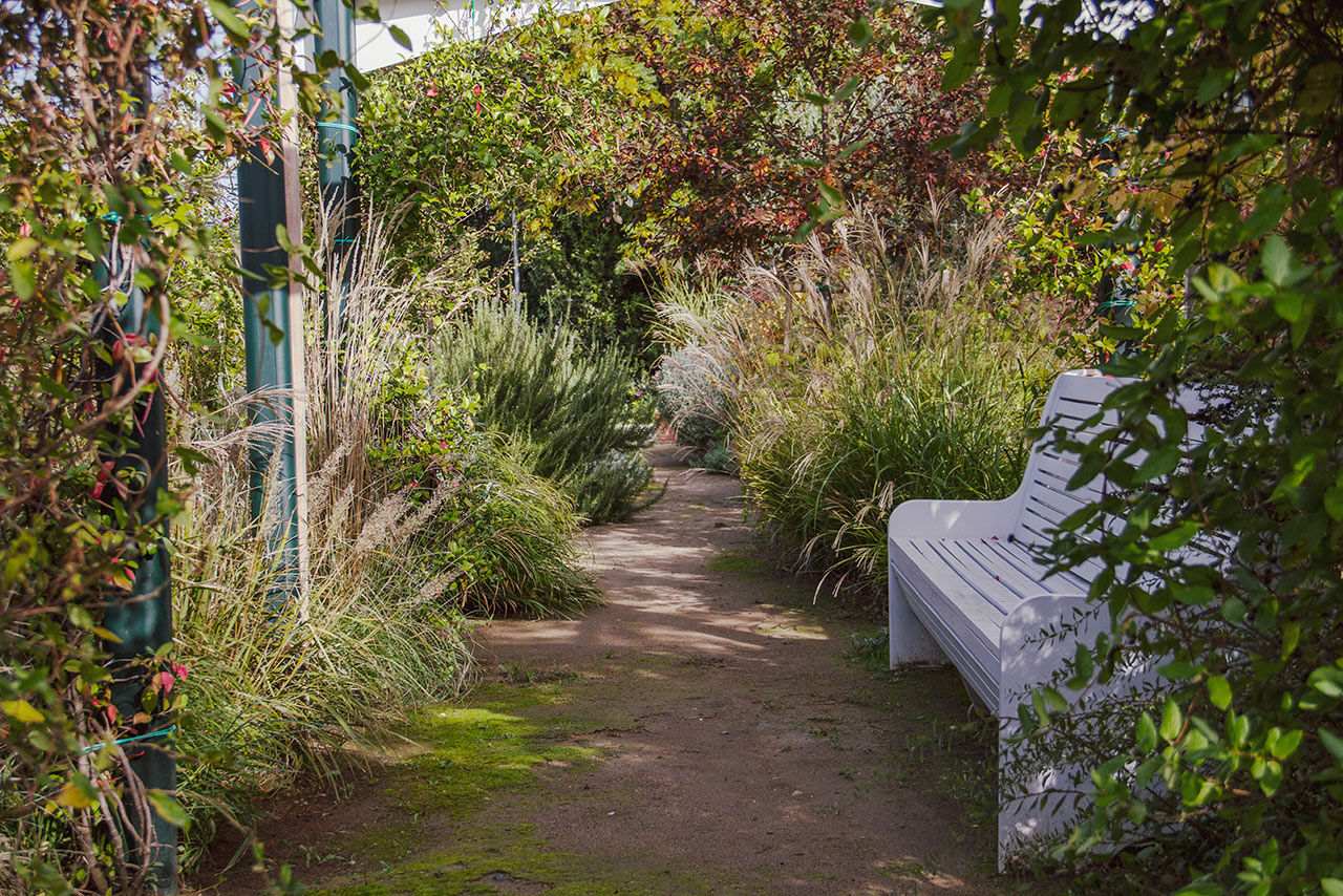 progetti-giardini-terapeutici-per-Alzheimer-mati