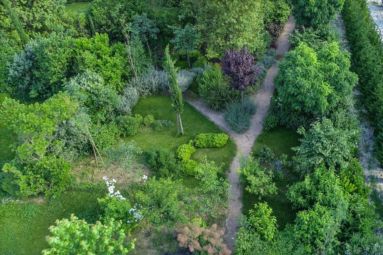 realizzazione-giardini-terapeutici-Sindrome-di-Down-mati