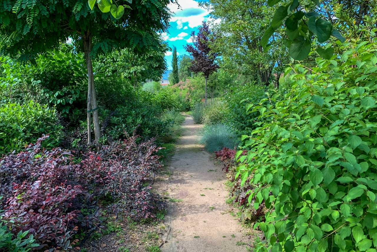 progetti-giardini-terapeutici-cura-autismo-mati